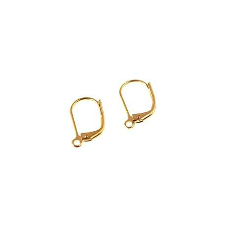 Leverback earrings 15x9mm GOLD TONE x2